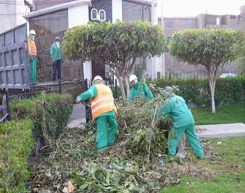 Limpieza publica for Mantenimiento parques y jardines